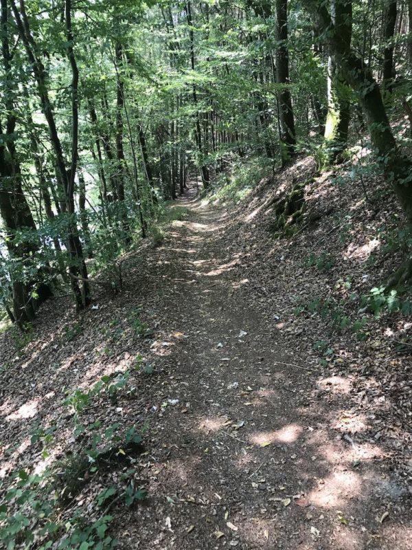 Kurz geht es bergauf auf der Luxemburger Seite des Wanderwegs Nat'Our Route 2