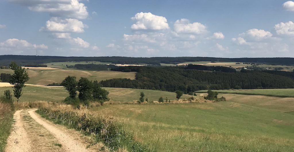Ausblick auf dem Bach Pfad des NaturWanderParks delux