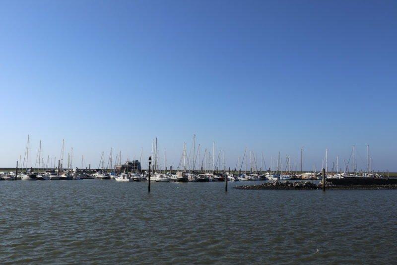 Yachthafen Norddeich Mole mit vielen kleinen Booten