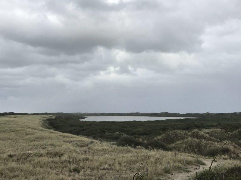 Ein Weg führt rund um den Hammersee