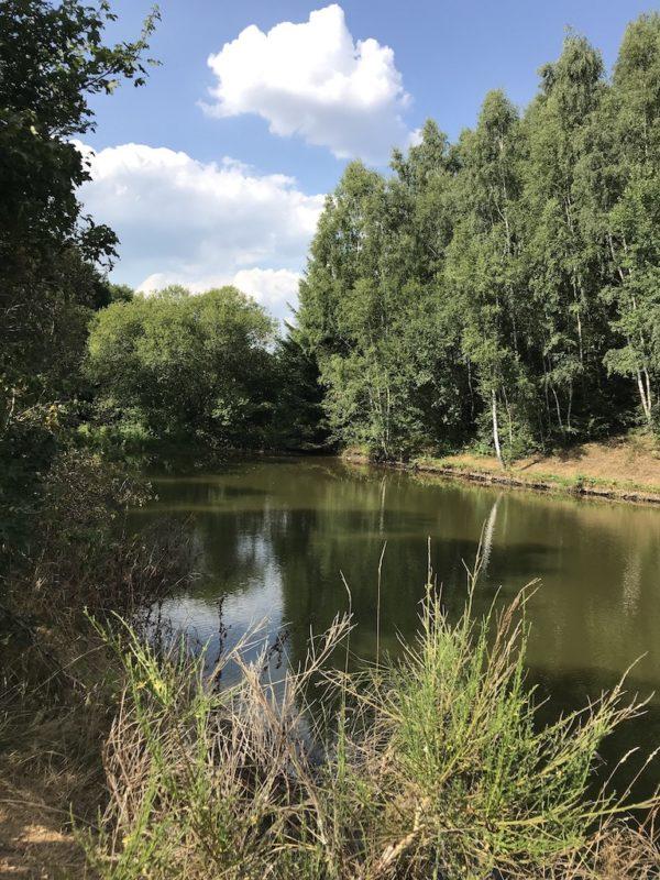 Einer von drei idyllischen Seen am Ende des Bach Pfades kurz vor Bleialf
