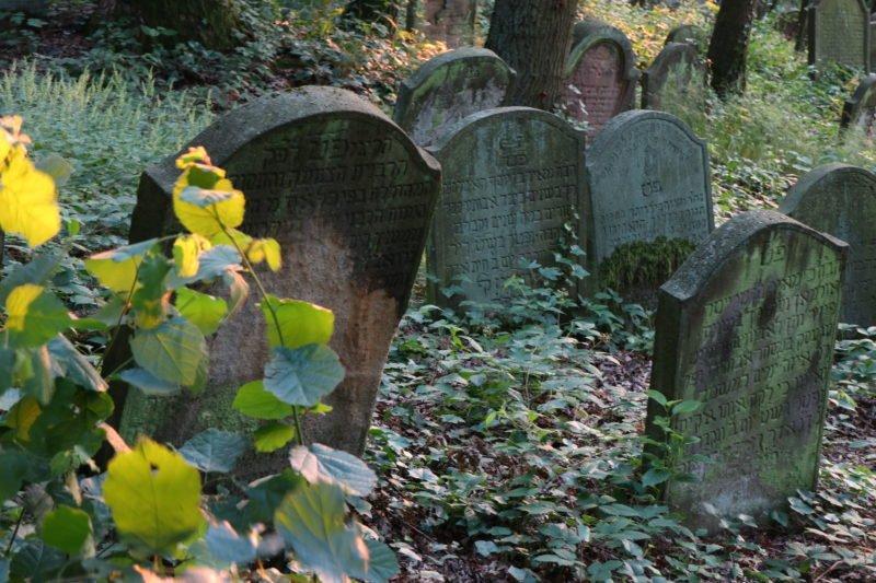 Grabsteine, kurz vor dem umkippen auf dem Jüdischen Friedhof Bingen