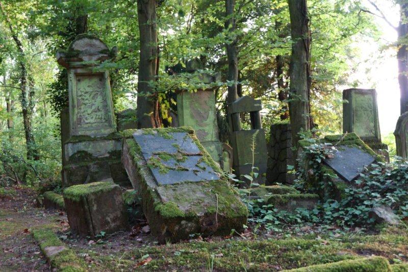 Und auch viele schon umgekippte Grabsteine auf dem Jüdischen Friedhof Bingen