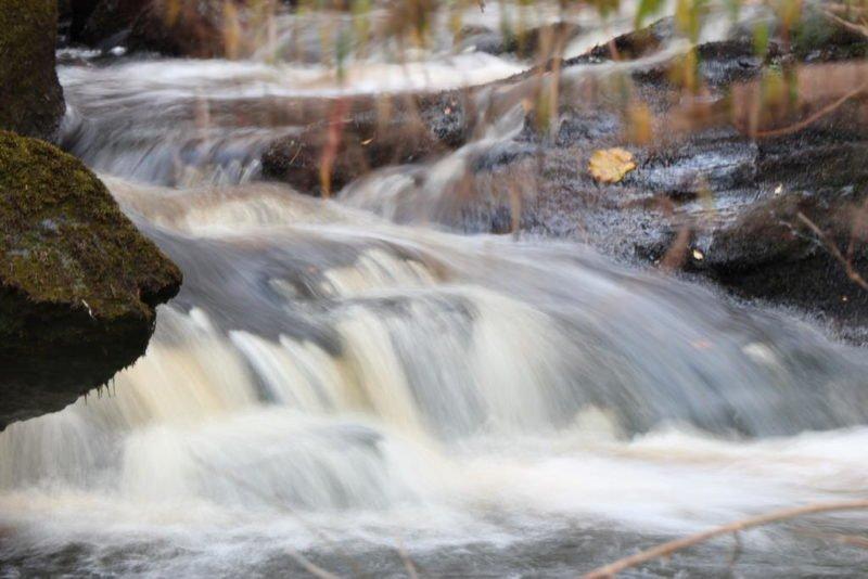 Spontane Langzeitbelichtung ohne Filter an einem Bach in Irland
