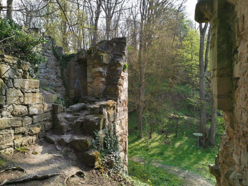 Der Rundweg führt rund um die Ruine und rein kann man auch in die Ruine Schmachtenberg