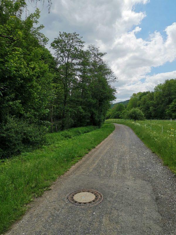 Die Wanderung auf dem Wacholderweg beginnt mit einem kurzen Schotterweg
