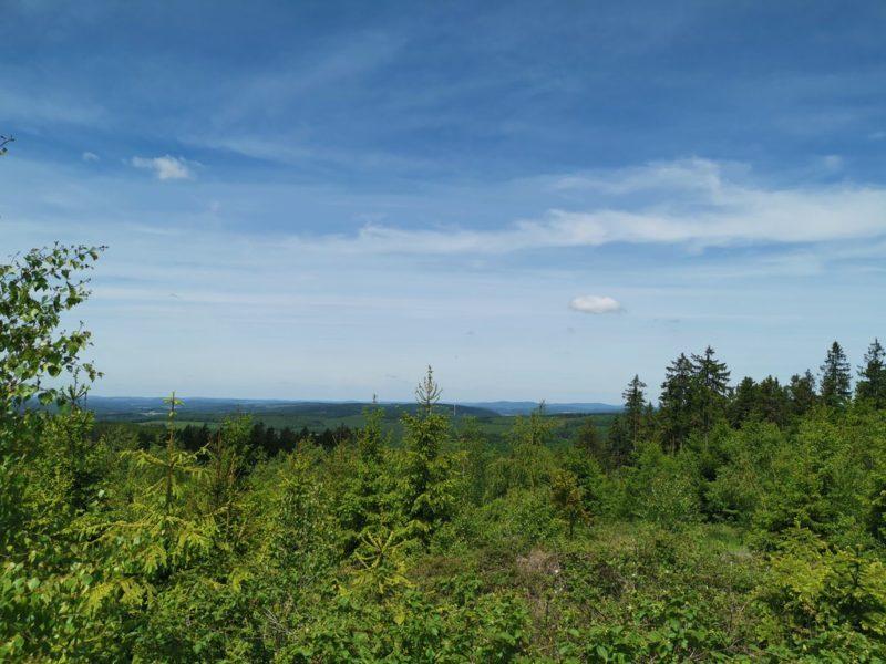 Und das ist die Aussicht, die ich hier gerade auf der Dill-Bergtour fotografiert habe in dem Moment