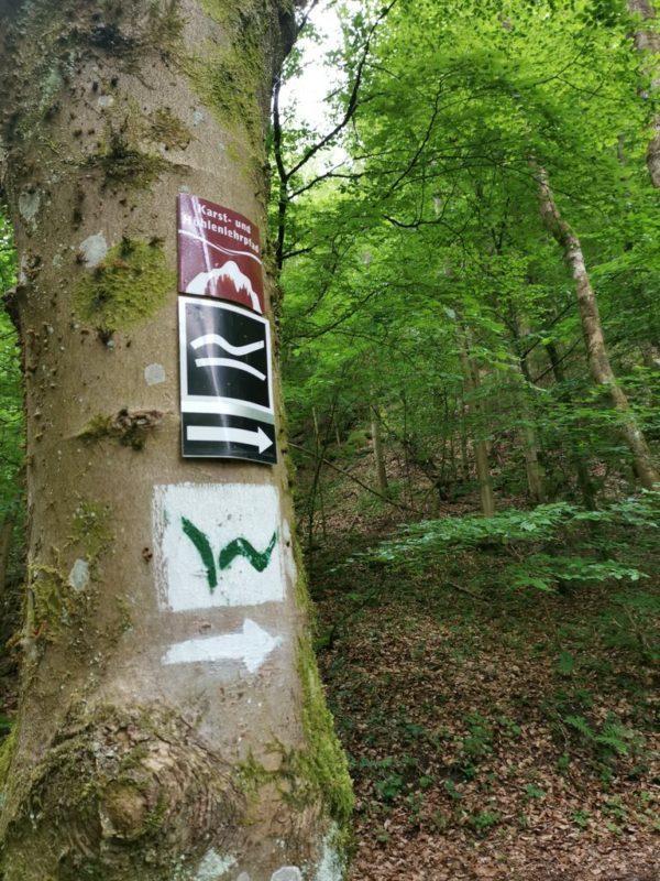 Abzweigung nach rechts - nicht nur für die Breitscheider Höhlentour, sondern auch auf dem WesterWaldSteig