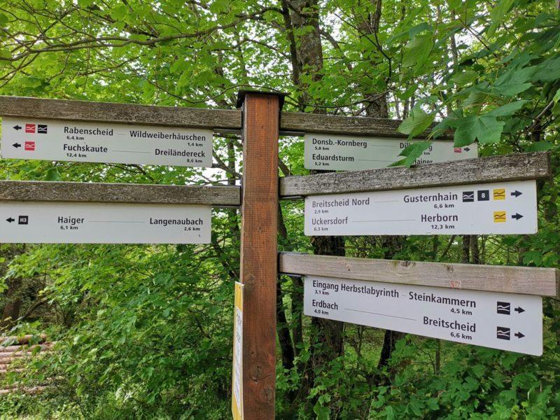 Wandermarkierungen - rot: Rothaarsteig. Gelb: Zuweg zum Rothaarsteig. Schwarz: Rothaarsteig-Spur, also das, wo wir heute lang wollen