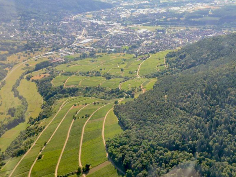 Die Weinberge von Bürgstadt und links oben Miltenberg