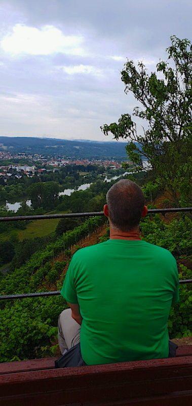 Ausblick auf dem Weg runter auf den Nachbarort von Klingenberg, Erlenbach (Foto: Andre Dietenberger)