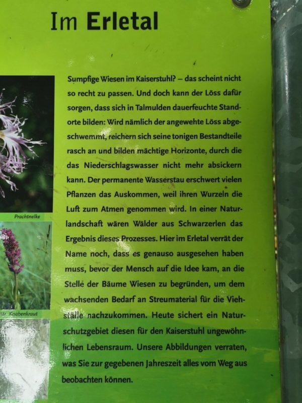 Informationstafeln wie hier im Erletal säumen den Kaiserstuhlpfad