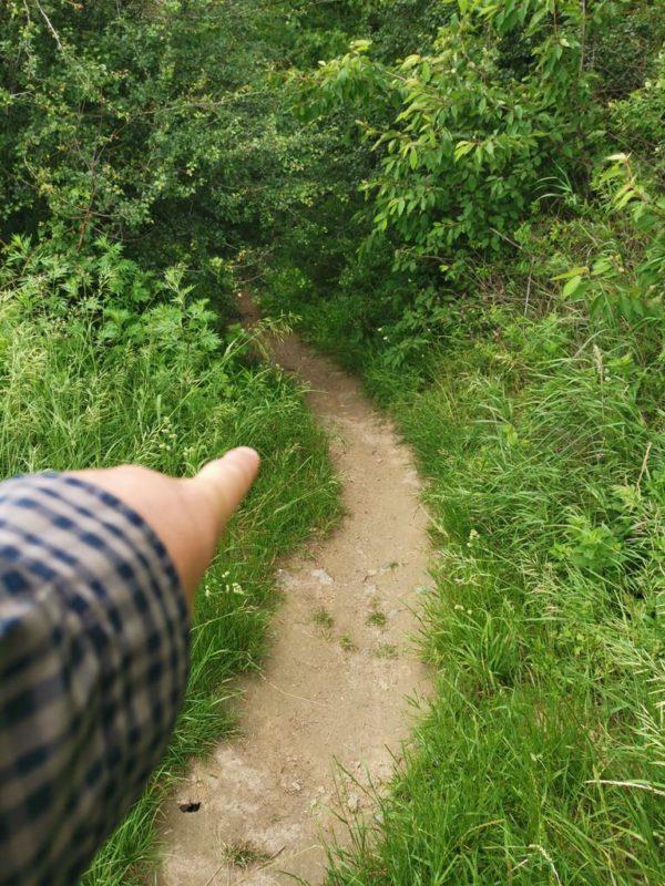 Und der nächste steile Abstieg, der auf mich wartet
