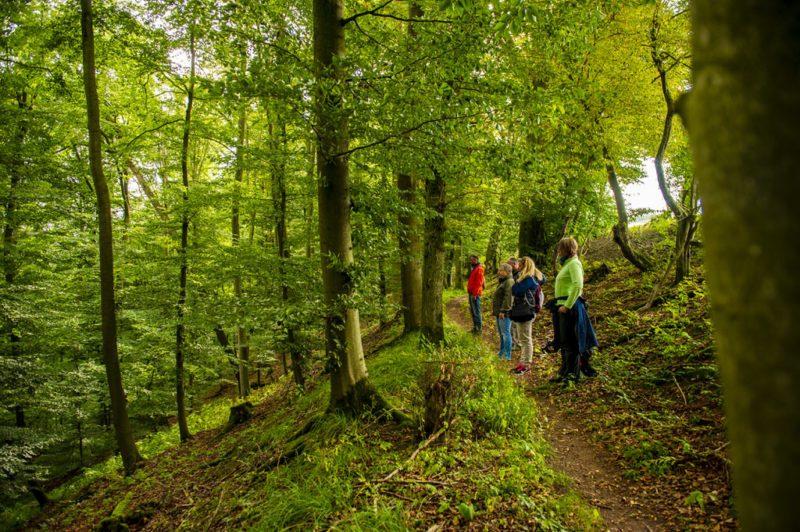 Atemübung als Einstieg in die Achtsamkeit auf dem Waldweg (Foto: I. Jansen, Kulturland Kreis Höxter)