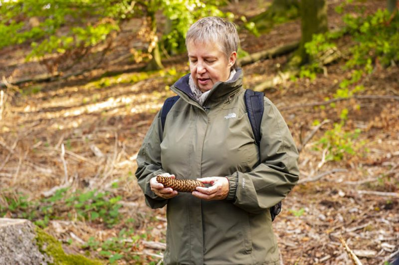 Unsere Achtsamkeits Kursleiterin Anke Holz mit ihrem Fichtenzapfen (Foto: I. Jansen, Kulturland Kreis Höxter)