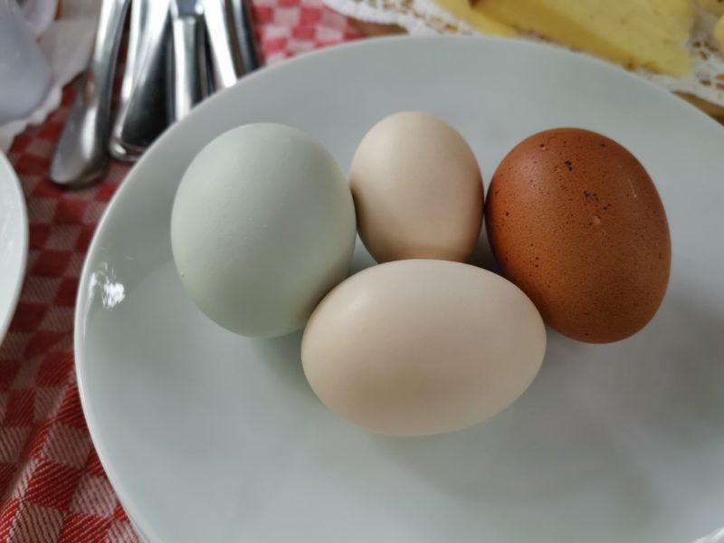 Eier in verschiedenen Farben