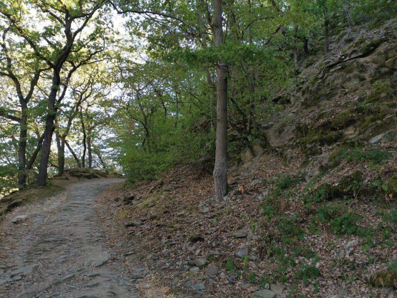 Nicht mehr ganz so steil geht es aufwärts nach der Burg Katz in Richtung Loreley