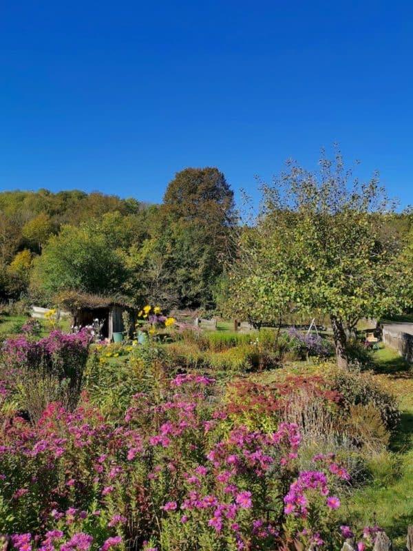 Ein schöner farbenprächtiger Garten am Wegesrand