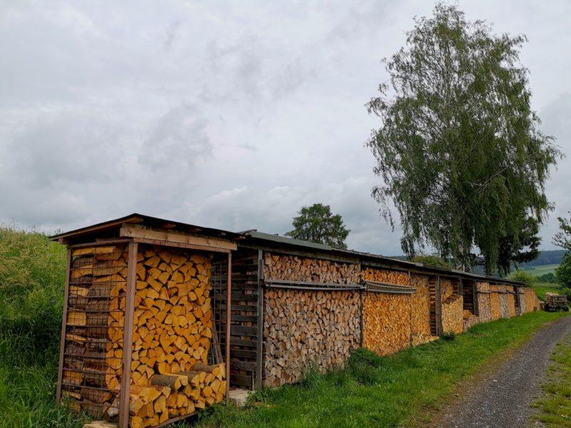 Stapel mit frisch geschlagenen duftenden Holz am Wegesrand