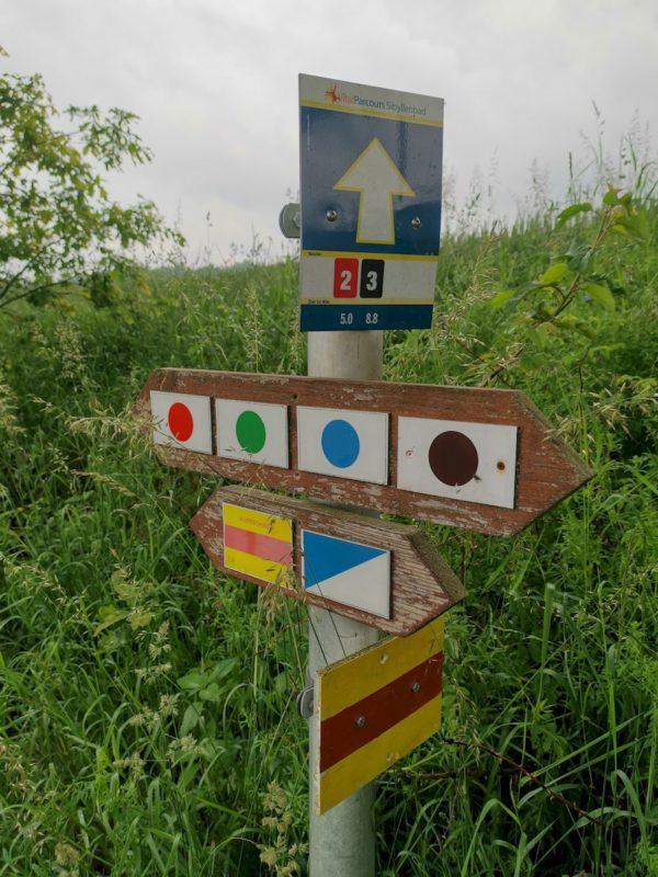 Diverse Wanderwege sind ausgezeichnet, das gelb-rot-gelbe Symbol kennzeichnet den Nurtschweg