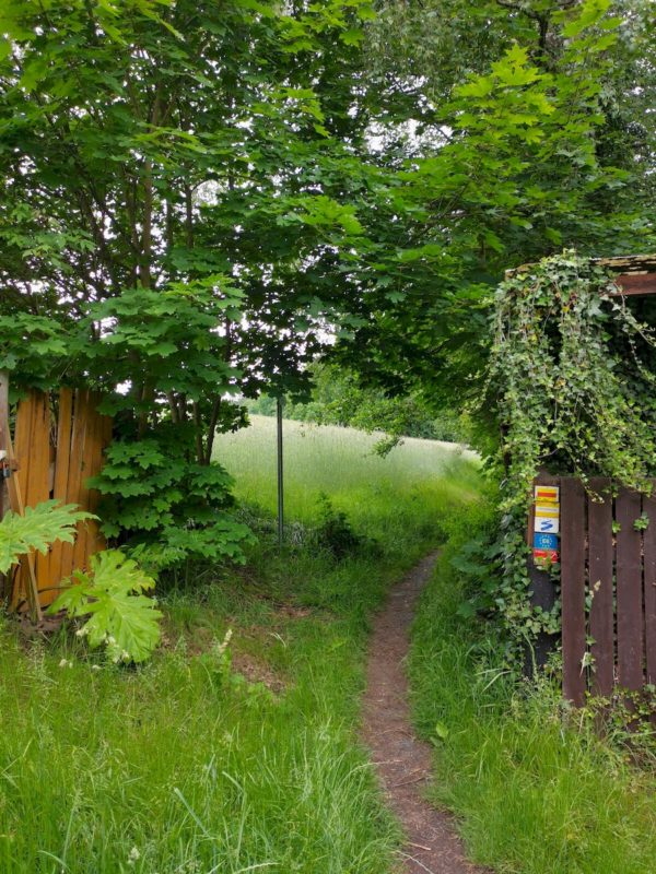 Runter vom Aspahalt, weiter auf guten Untergrund geht der Nurtschweg nach Waldsassen