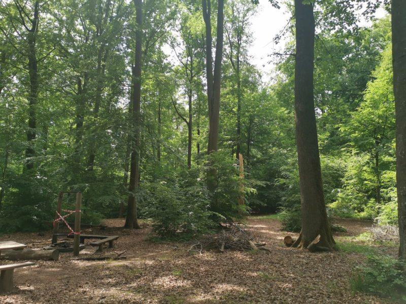 Bänke und Spielplatz im Wald