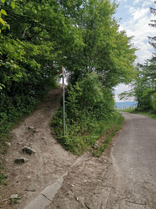 Kurz geht es steil aufwärts - aber weg vom Asphalt auf einen steinig-erdigen Pfad