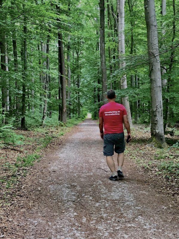 Ich mit travellerblog.eu Werbung auf dem T-Shirt beim Wandern von hinten