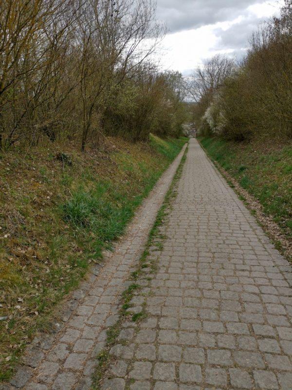Hohlweg abwärts im Scharnhauser Park