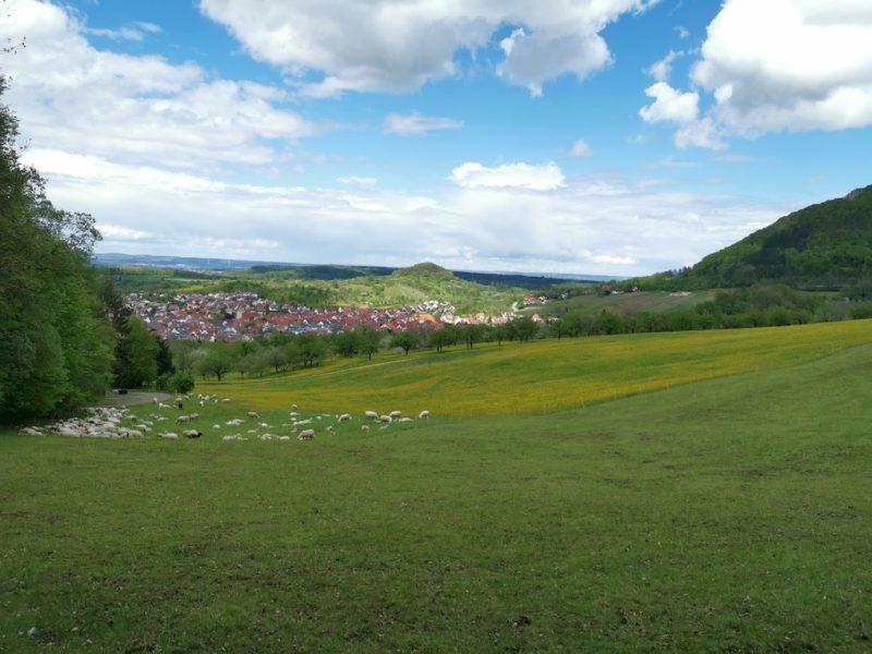 Ein herrlicher Ausblick auch am Fuße des Hügels