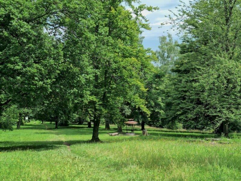 Auch über die Boller Heide führt die Berta-Hörnle-Tour und lädt zu einer Pause ein