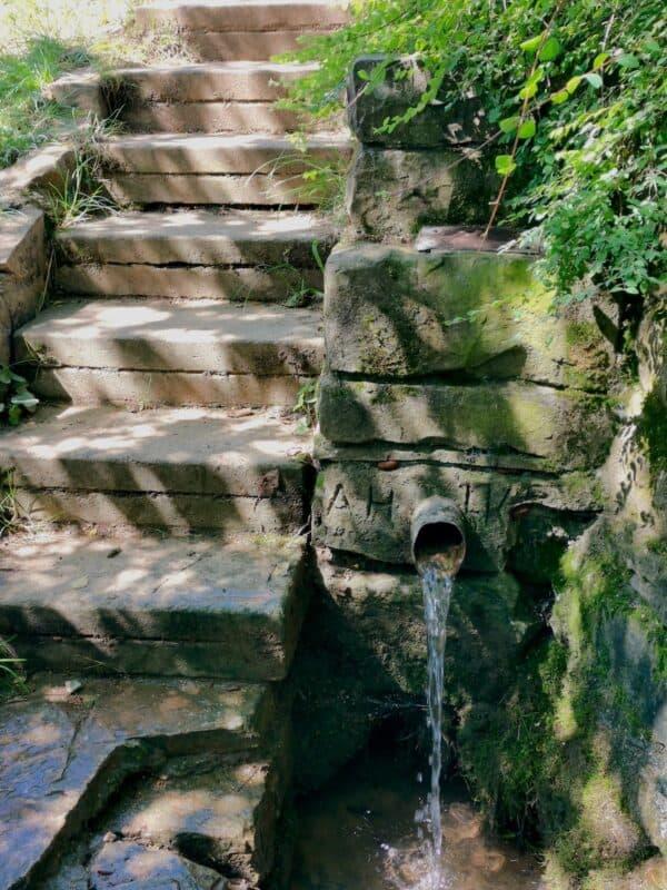Der Hirschbrunnen bietet uns eine schöne Erfrischung auf der Wanderung an