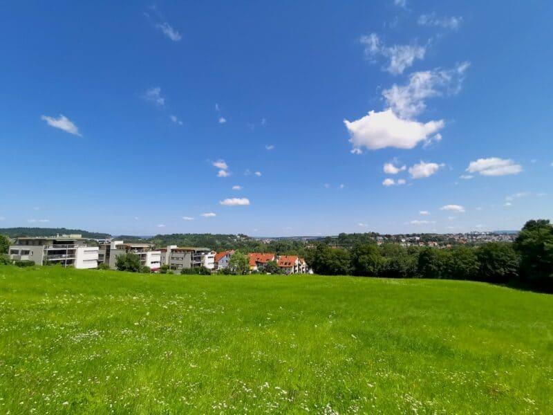 Kurz hinter dem Galgenbergpark die erste schöne Aussicht