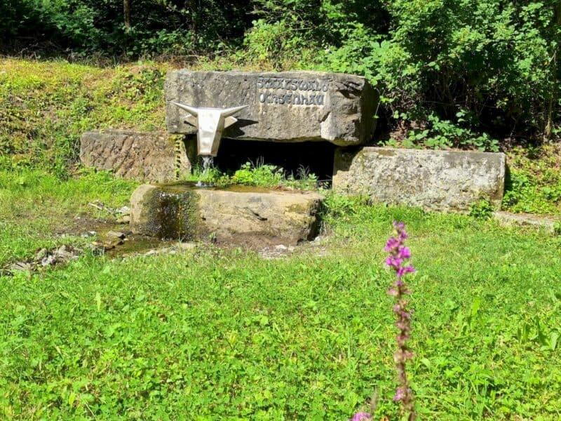 Brunnen mit Ochsenkopf, der auf den Staatswald Ochsenhau hinweist
