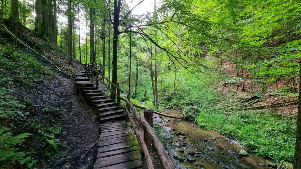 Stege führen durch den Wald durch das Strümpeflbachtal